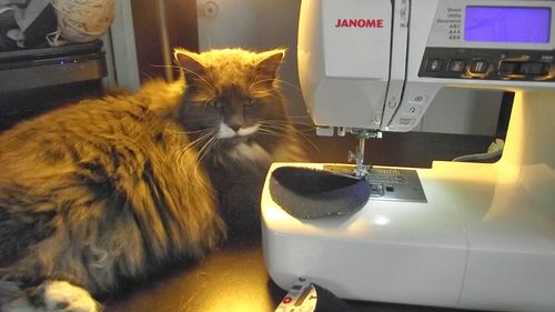 Sewing-Companion
