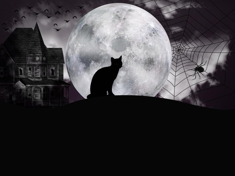 Halloween-3696571_1280